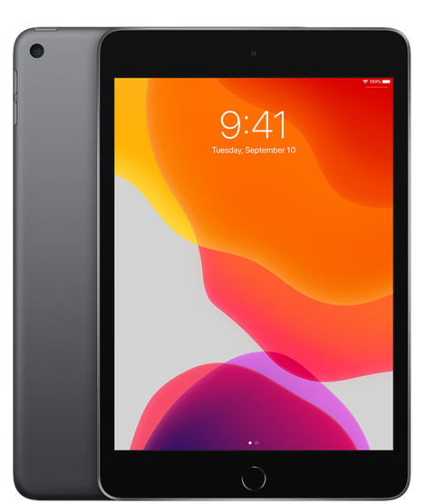 iPad mini 256GB - Wi-Fi + Cellular - Spacegrijs